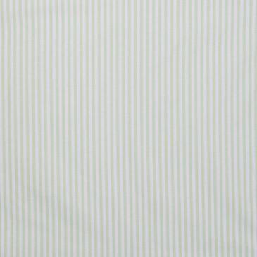 Fabric VICHYSTR1.46.160